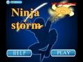 Ниндзя шторм