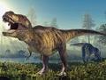 """Пазл """"Тираннозавр"""""""