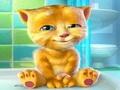 Говорящий котенок