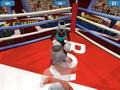 Летний спорт: бокс